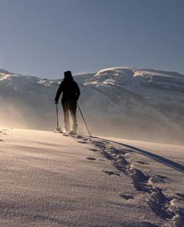 wycieczka w zimie