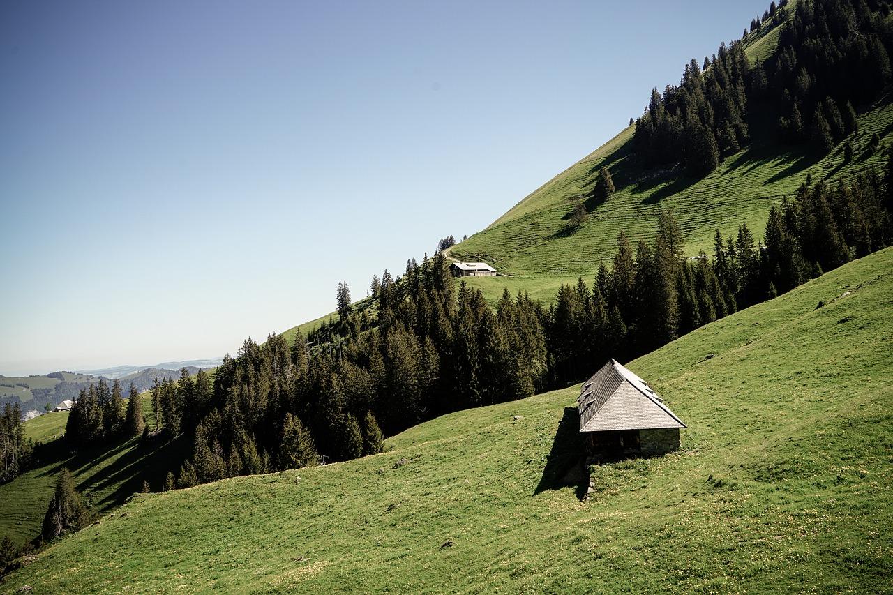 Gospodarstwa agroturystyczne Roter Hahn – wakacje z czworonogiem w sercu Alp